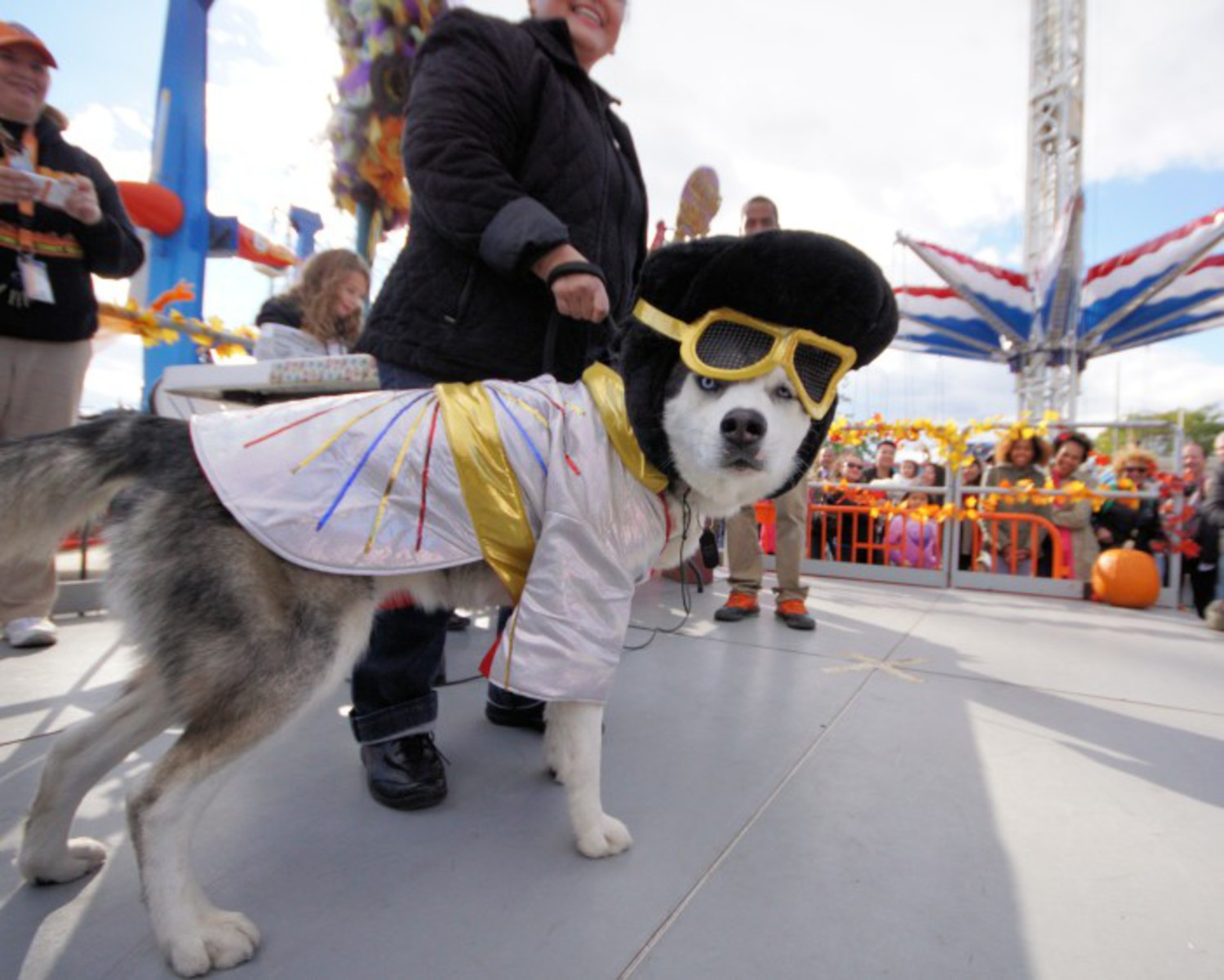 Register For Luna Park's Halloween Dog Parade & Costume Contest
