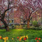 Theodore Roosevelt Park, Upper West Side, Manhattan