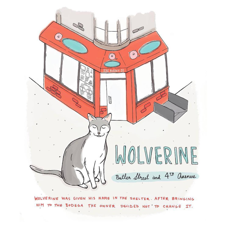 Wolverine // Gowanus, Brooklyn  #brooklynbodegacats #brooklynbodega #brooklyn #catsofinstagram #catillustration #bodegacats #bodegacatsofnyc
