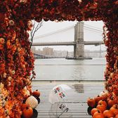 Pumpkin Bridge, Seaport, Manhattan