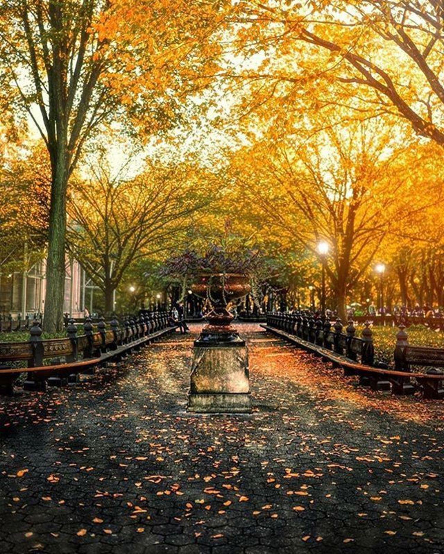 New York, New York. Photo via @gina_brake_photography_nyc #viewingnyc #newyorkcity #newyork #nyc