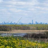 Manhattan Skyline from Freshkills Park, Staten Island