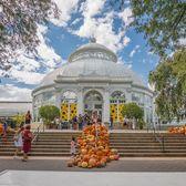 New York Botanical Garden, Bronx Park, Bronx