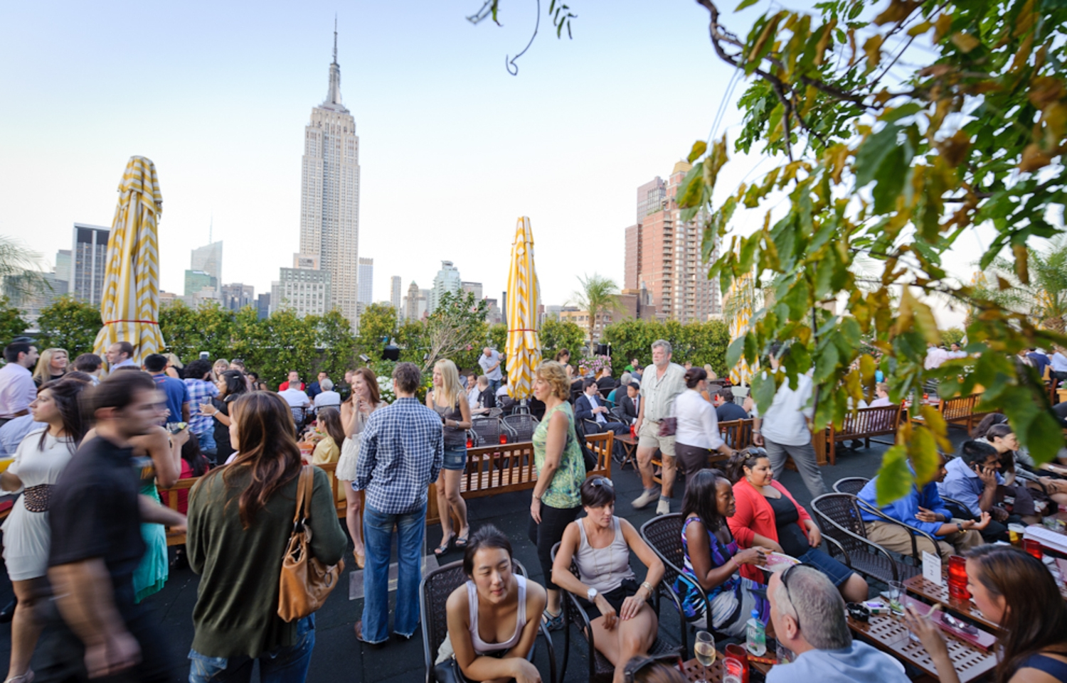 230 Fifth Rooftop Bar, NYC