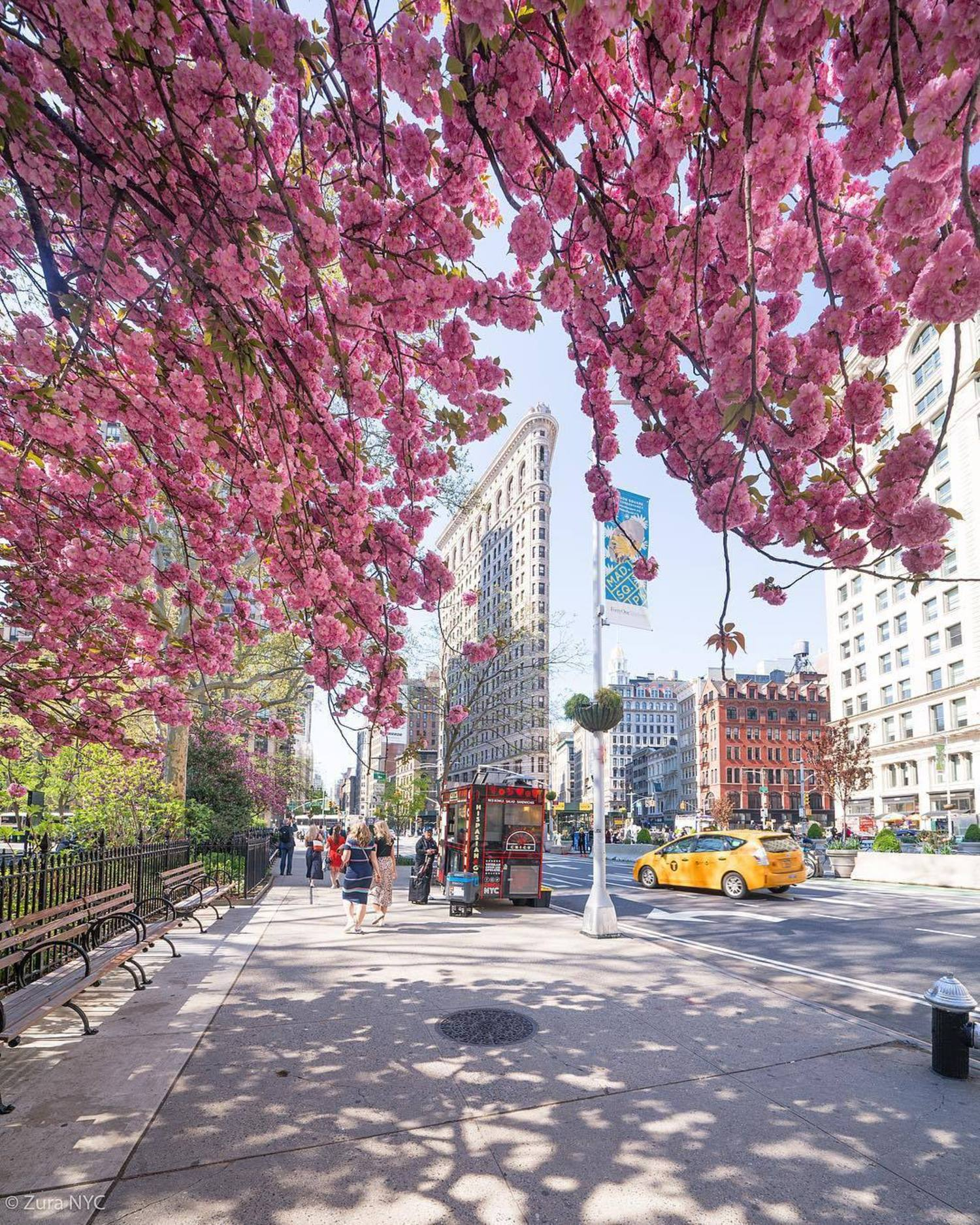 Spring in Flatiron District, Manhattan
