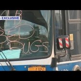 Some MTA buses out of service due to bed bug concerns