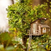 Treehouse Mini in the Park