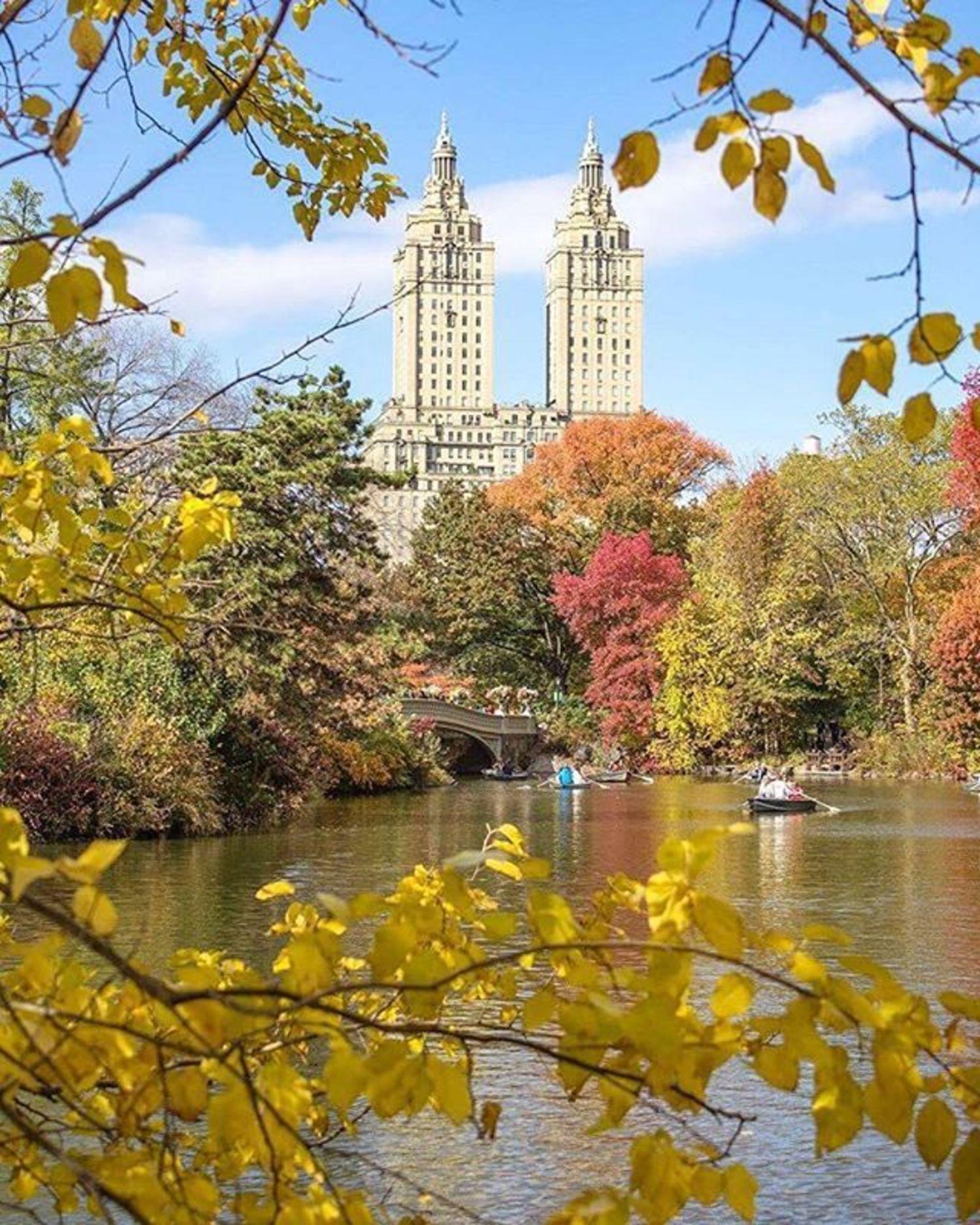 Central Park Lake, New York. Photo via @newyorkcitykopp #newyorkcity #newyork #nyc #viewingnyc