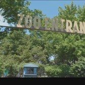 NYC Zoos And Aquarium To Reopen On July 24
