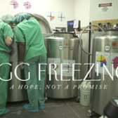 Egg Freezing: A Hope, Not a Promise