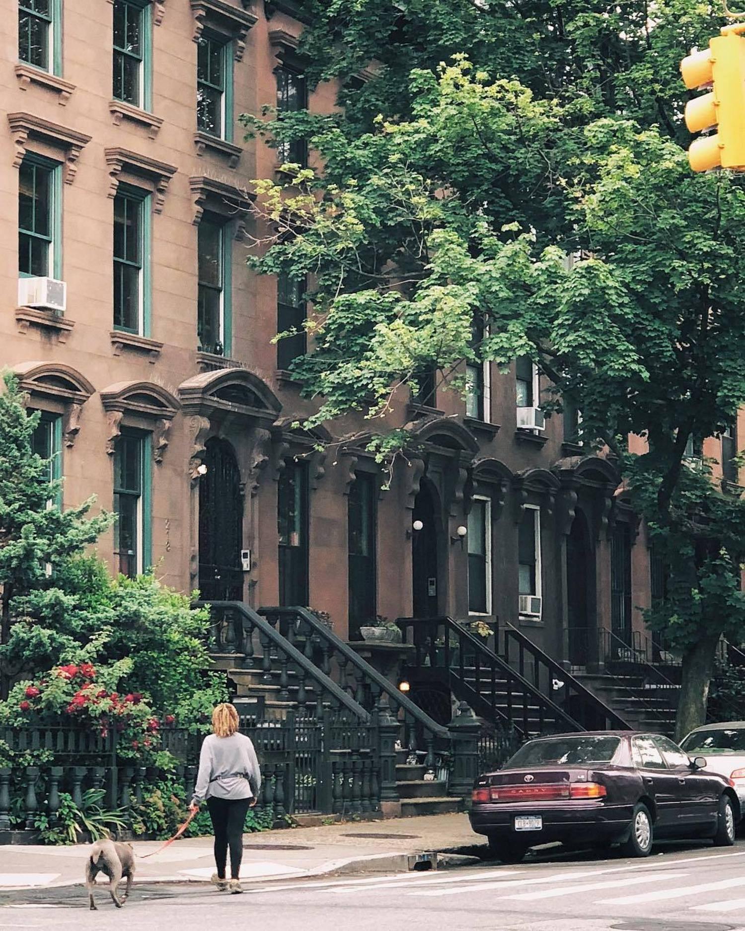 Fort Greene, Brooklyn