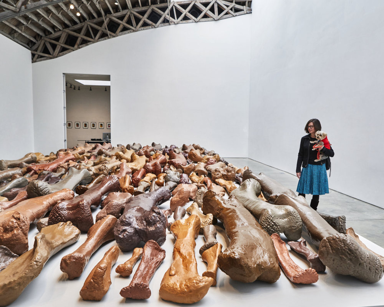 Following your nose pays off! Rocky discovered Lost Objects by artist Allan McCollum at Mary Bone... er...Boone gallery. It includes 240 cast concrete replicas of bone fossils from the Carnegie Museum of Natural History.