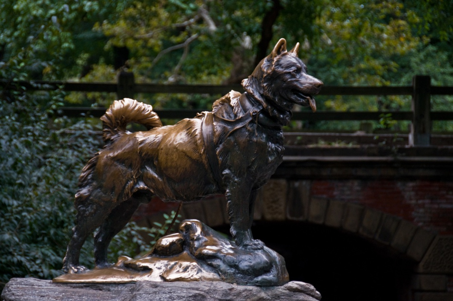 Balto | He is the most amazing dog in the world. I wanted to see this statue since 2000 and i finally made it.