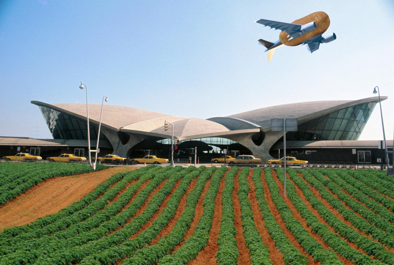 JetBlue Opened a Potato Farm at JFK Airport
