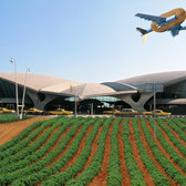 JetBlue Opened a Potato Farm at JFK Airport