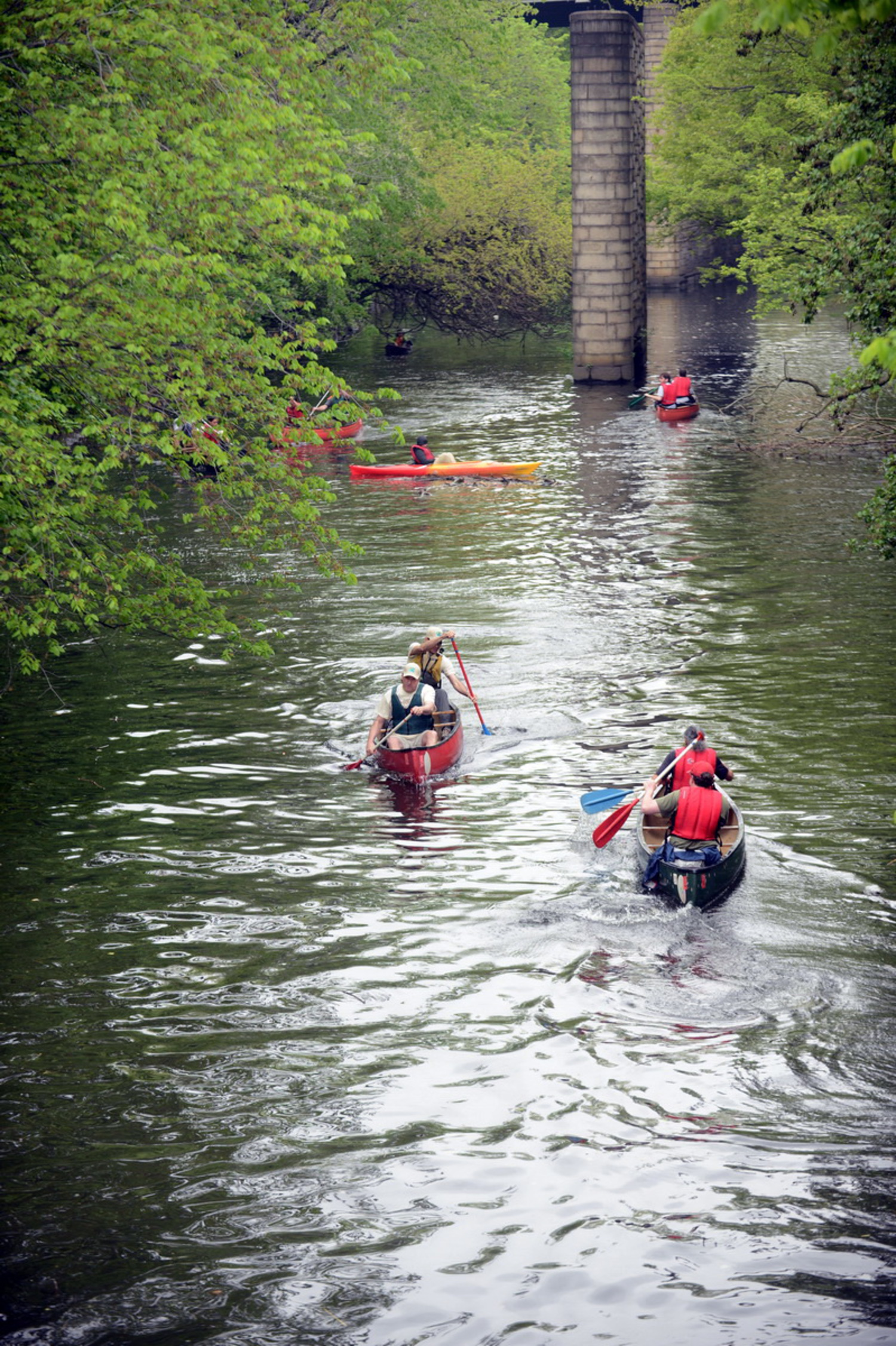 Live Streaming: A Fresh View of the Bronx By Canoe