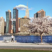 Midtown East, Manhattan from Long Island City, Queens