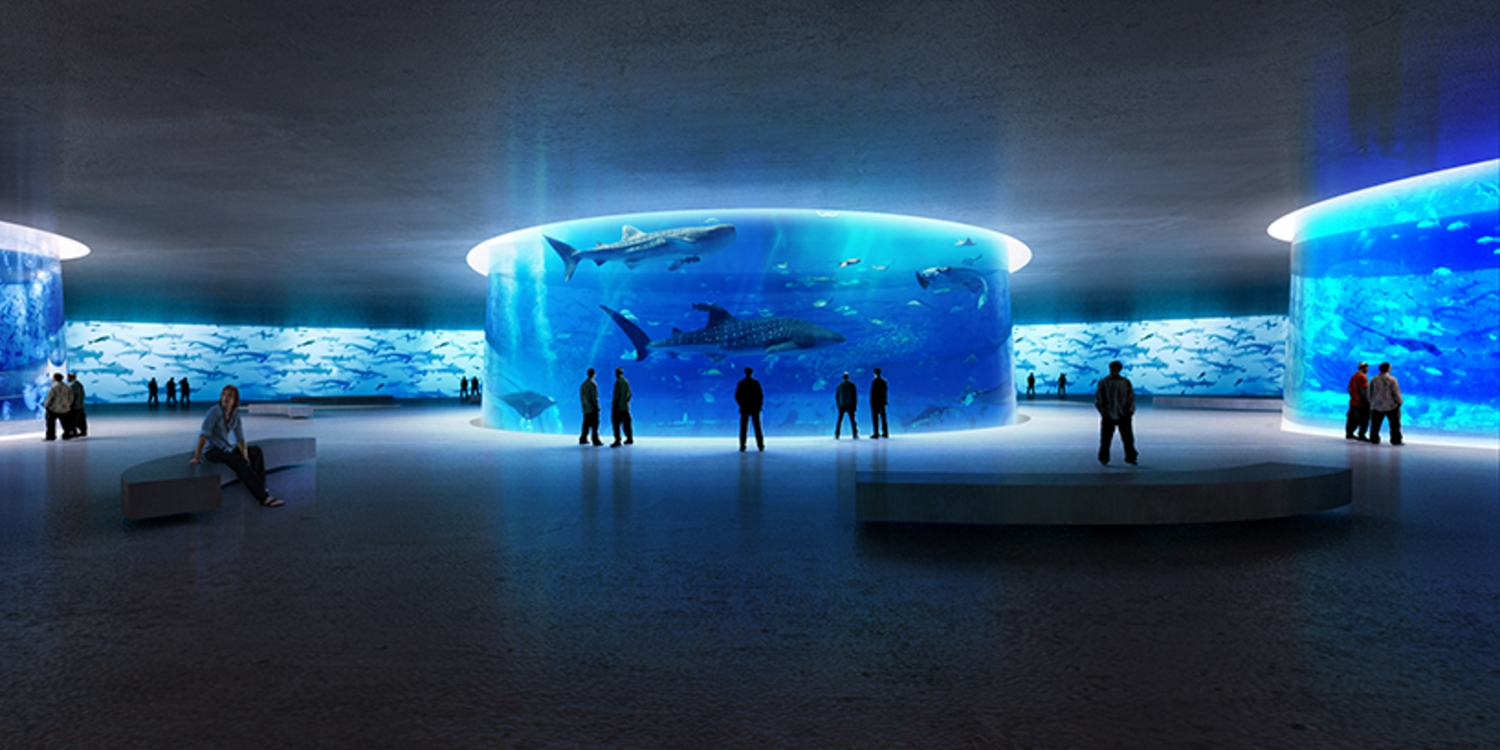 The idea is to make the visitors feel as if they're entering the water and discovering the beauty of marine life