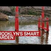 At Brooklyn smart garden, when it rains, it drains