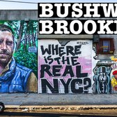 BUSHWICK BROOKLYN WALKING NYC: VINTAGE, GRAFFITI & VINYL RECORDS