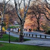Central Park, New York, New York. Photo via @qwqw7575 #viewingnyc #newyorkcity #newyork #nyc #centralpark