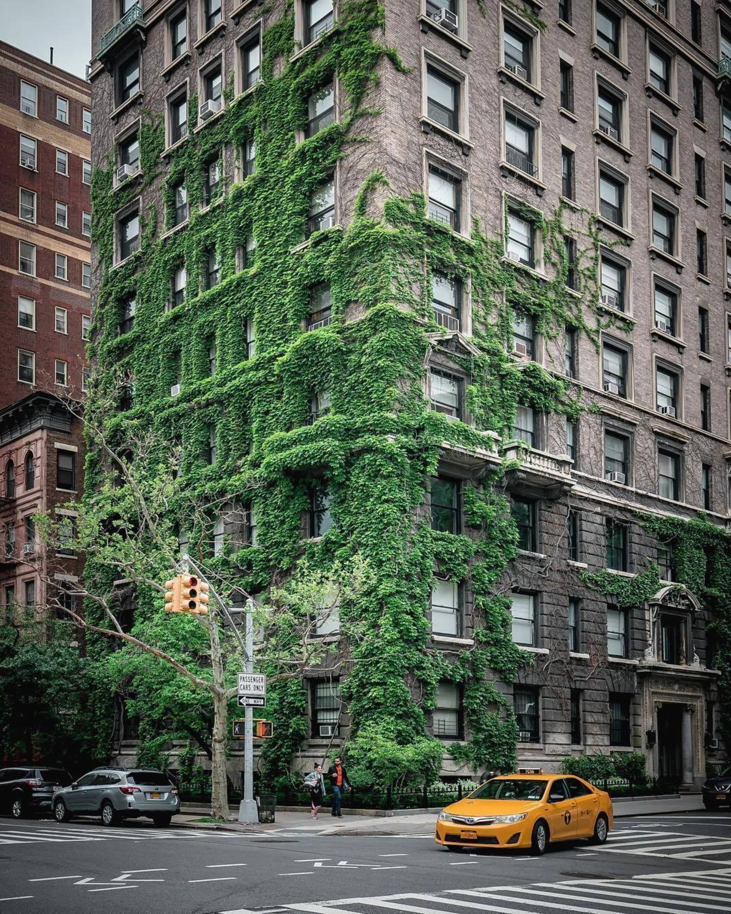 New York, New York. Photo via @212sid #viewingnyc #newyork #newyorkcity #nyc