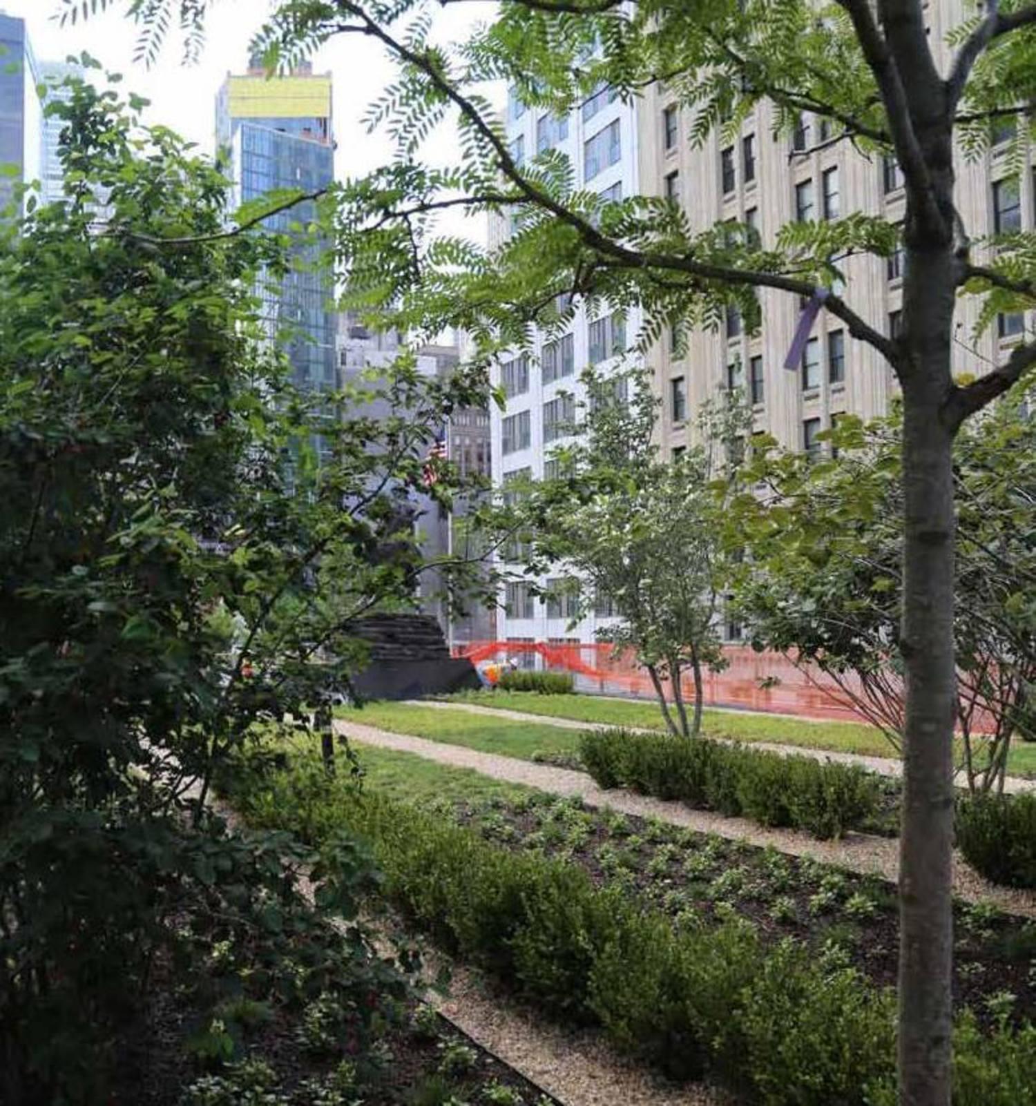 Planting continues at WTC Liberty Park
