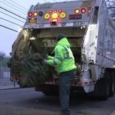 Treecycling!