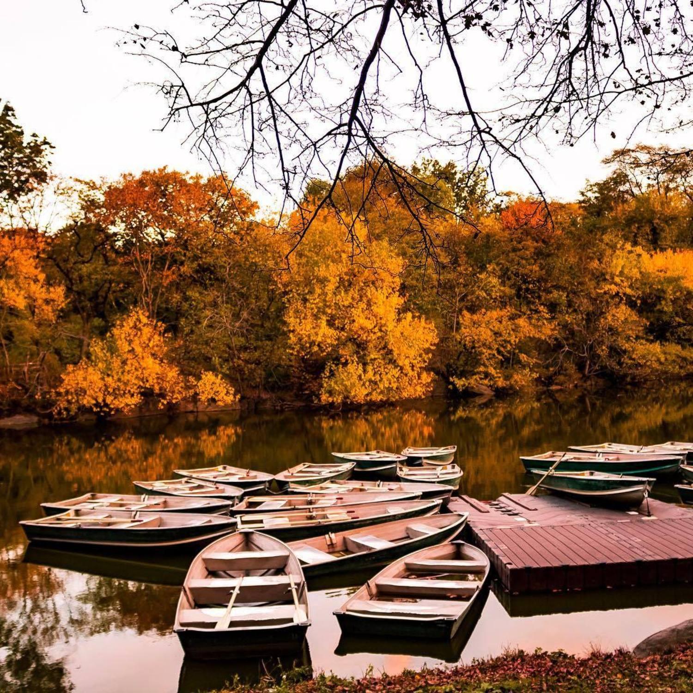 Central Park Lake, New York, New York
