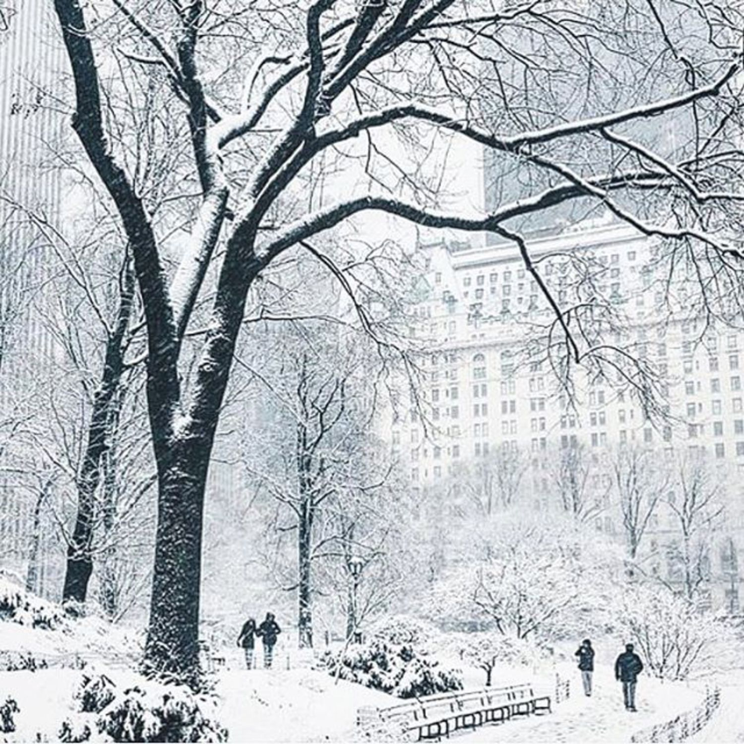 Currently, in #NYC. Stay warm and safe, the store is closed today and will re-open tomorrow. [photo @jssilberman]
