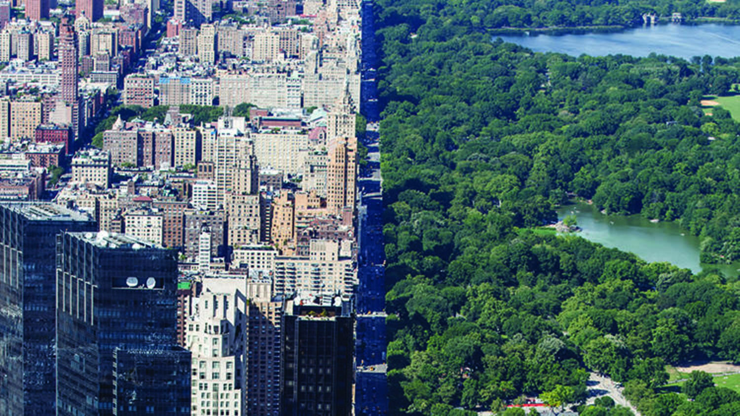 Central Park, looking north from Colombus Circle