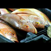 How Fish Gets to Restaurants: A Look at F Rozzo and Sons | Potluck Video