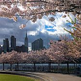 Hunter's Point Park, Long Island City, Queens