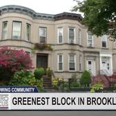 Brooklyn's Greenest Block