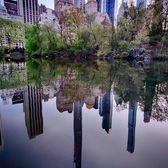 The Pond at Central Park, Manhattan