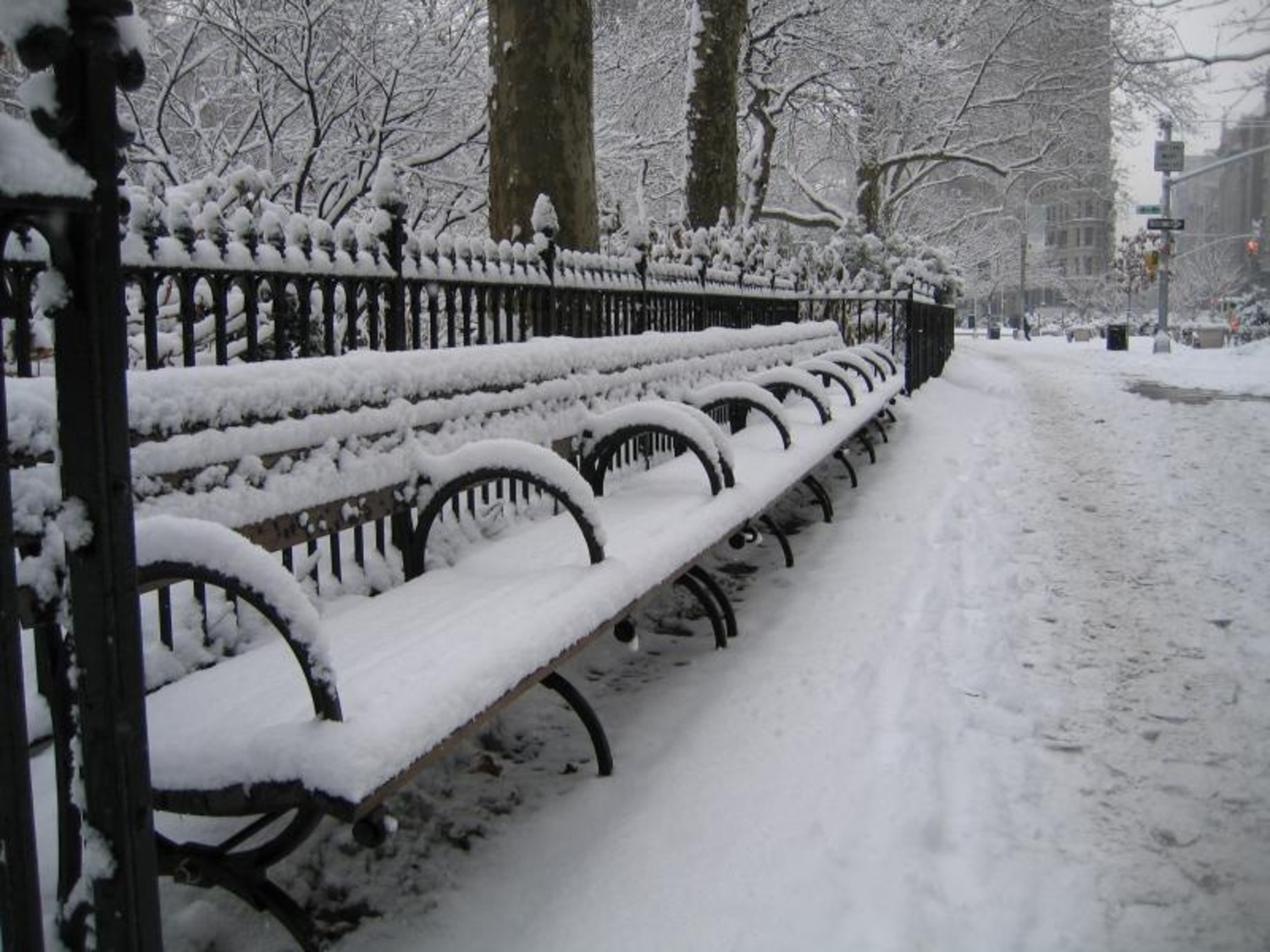 NYC snow day | Madison Sq. Park.