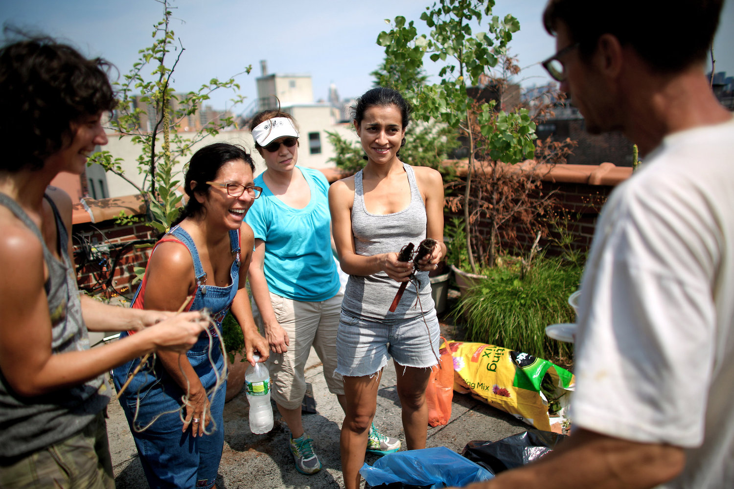 On a recent Sunday, residents gathered for a garden work day on the roof of Umbrella House, where they tended to plants and tidied up.