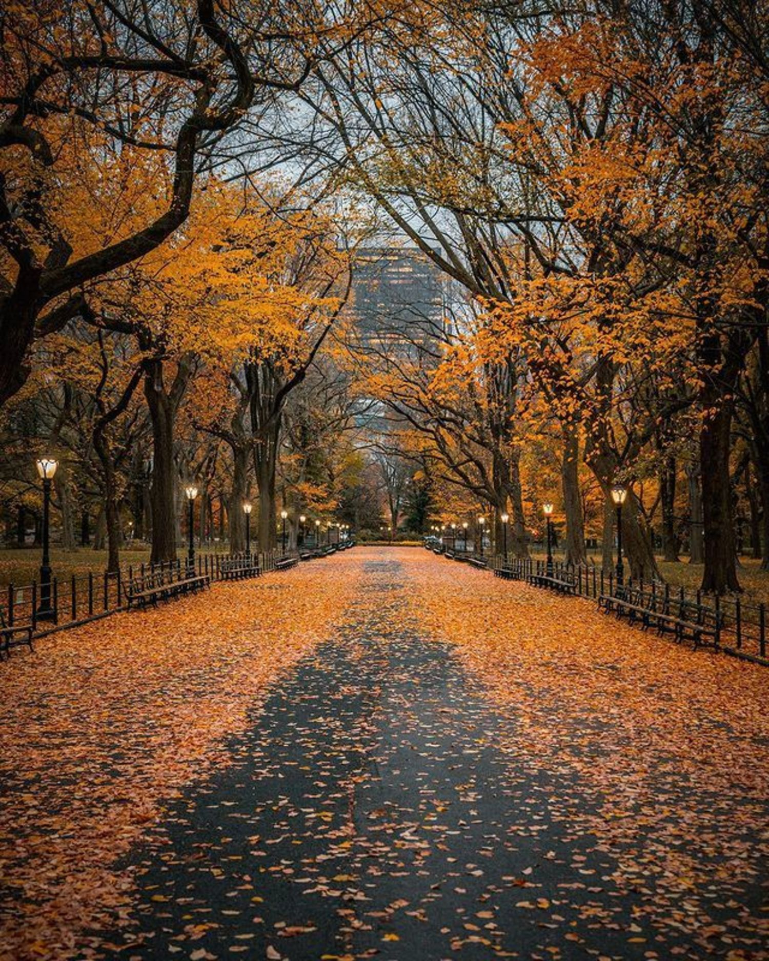 The Mall in Central Park, Manhattan, New York