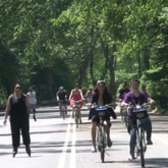 "Central Park is now ""Car-free Forever"" North of 72nd Street!"