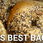 Bagel Battle Royal: Which Bagel Style is Best?