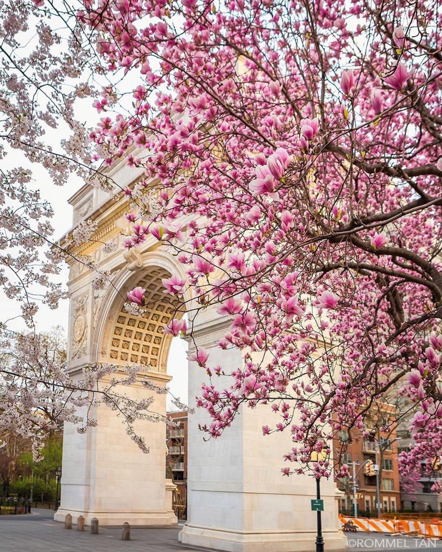 Washington Square Arch, Manhattan. Photo via @rtanphoto #viewingnyc #nyc #newyork #newyorkcity #washingtonsquarepark