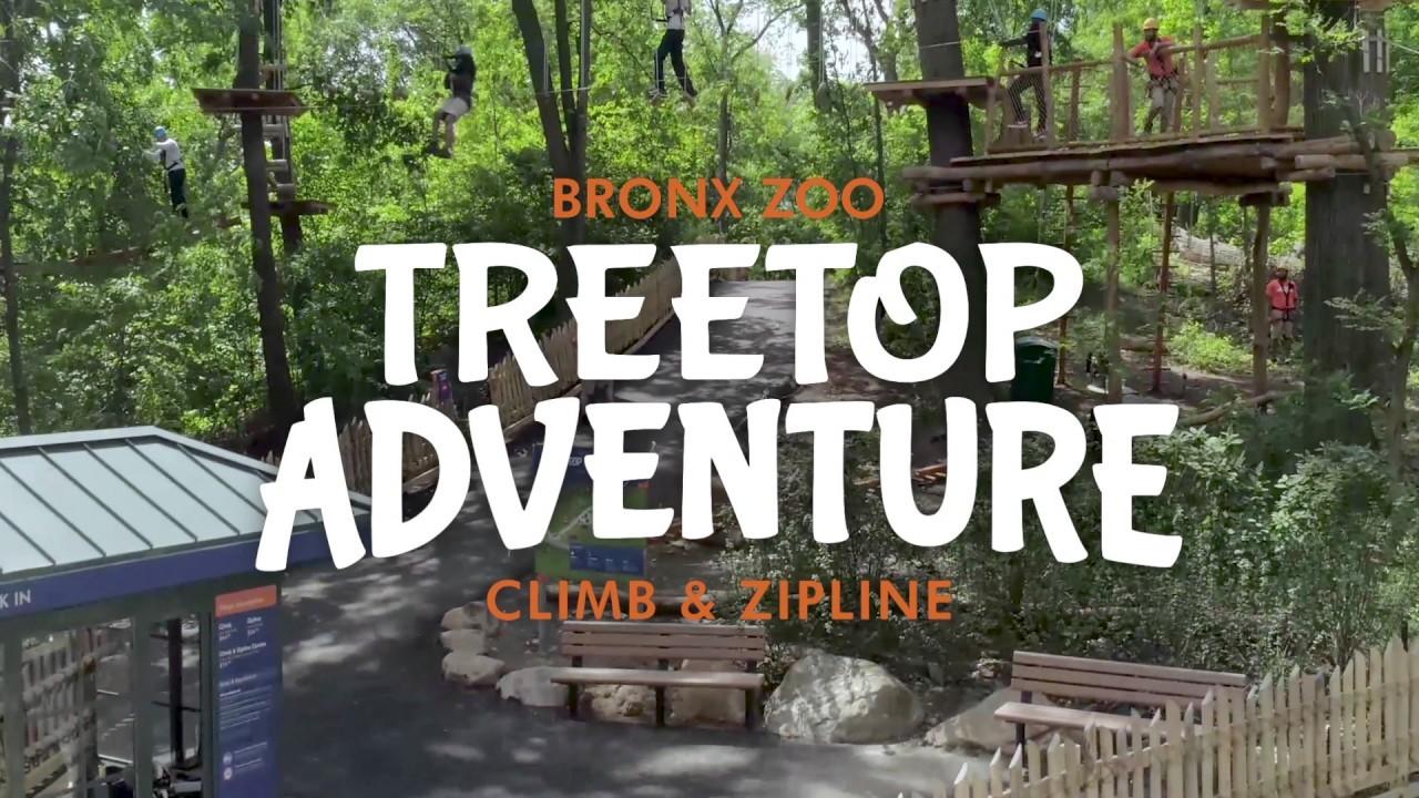 [WATCH] Zip and Climb in the New Treetop Adventure Exhibit
