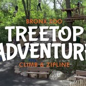 Zip and Climb at Treetop Adventure | Bronx Zoo