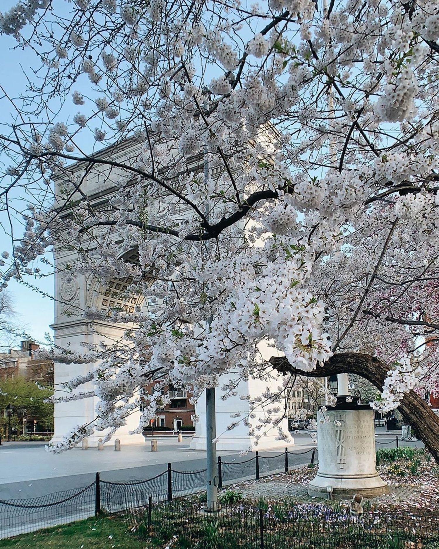 Washington Square Park, Greenwich Village, New York