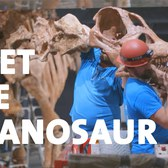 Meet the Titanosaur