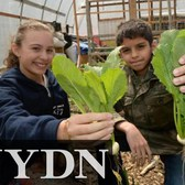 Planting Seeds: Young Students in Brooklyn Learn to Grow and Sell Foods in School Gardens