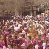 NYC Bhangra's Holi Hai Festival 2014