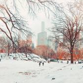 Central Park, New York, New York