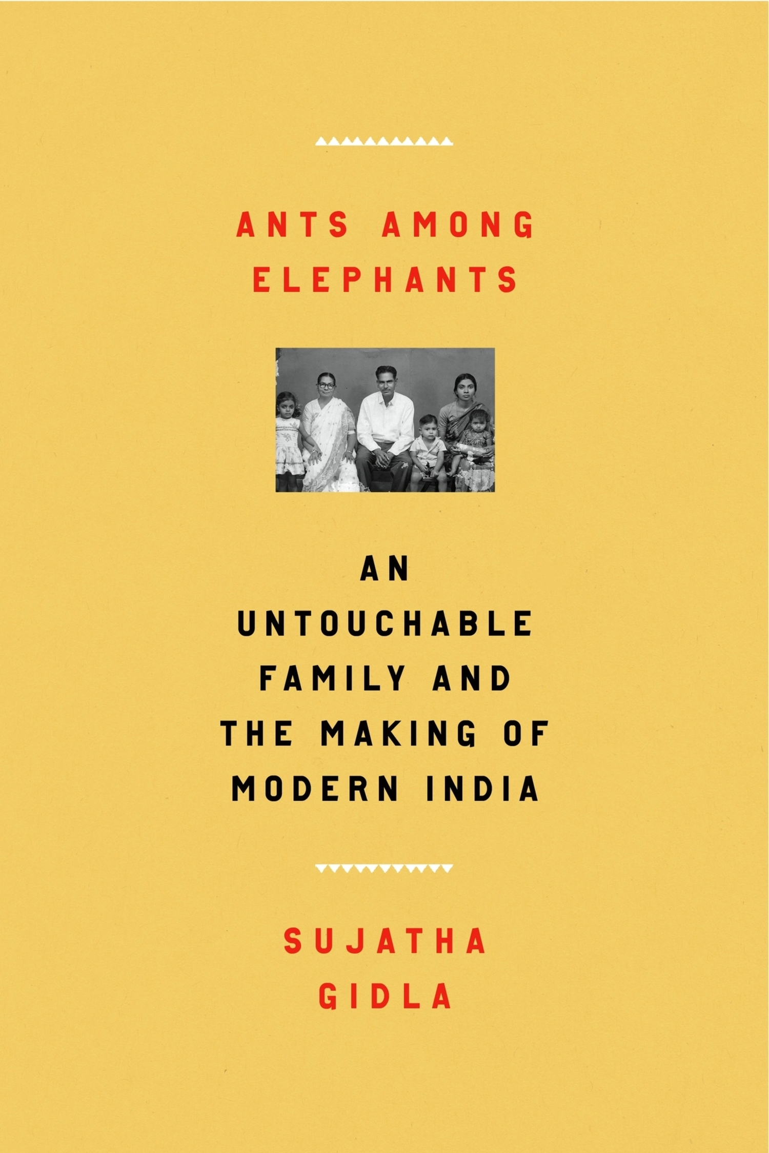 Ants Among Elephants: An Untouchable Family and the Making of Modern India. Book Cover