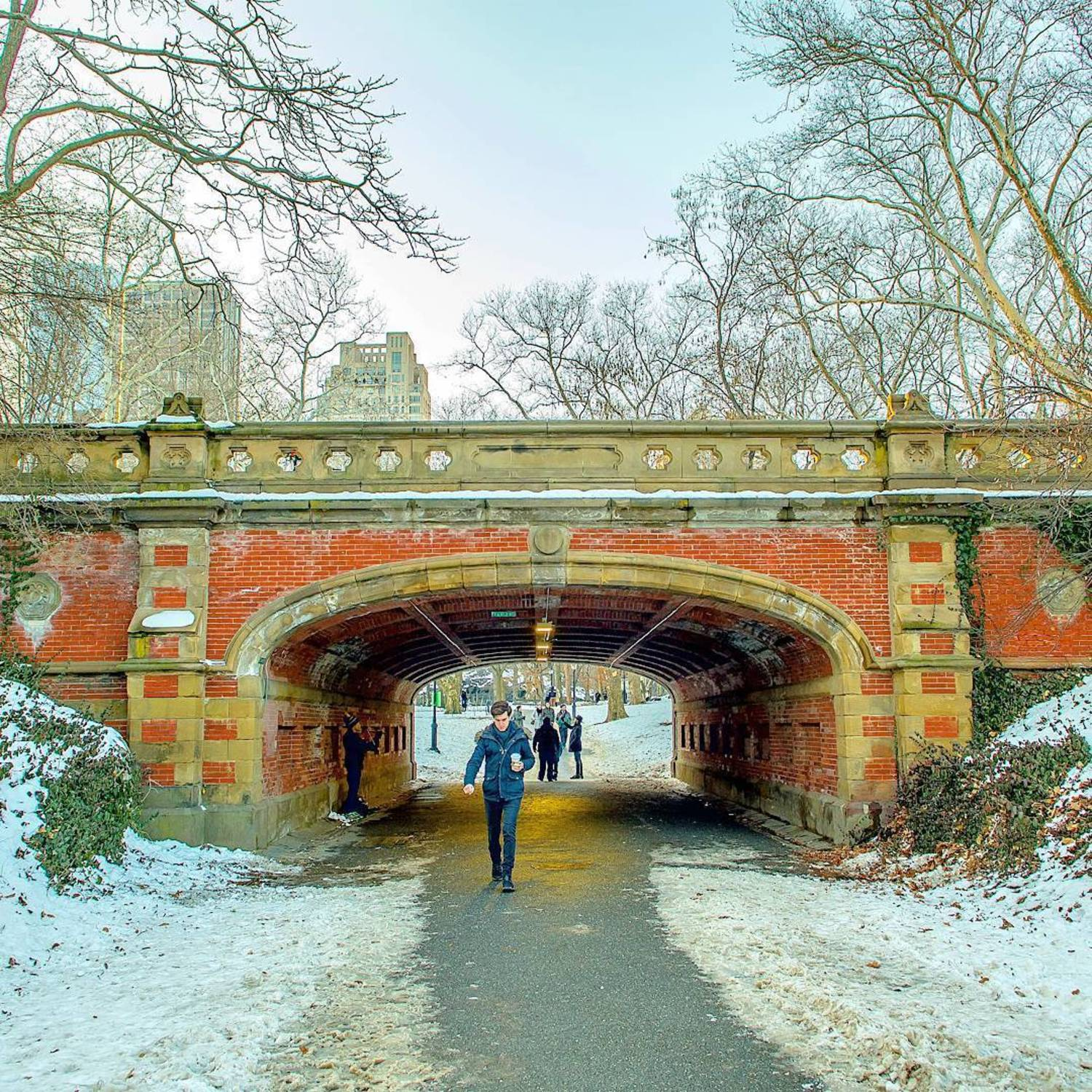 DripRock Arch in Central Park